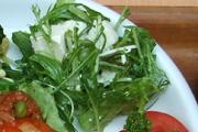 有機水菜と豆腐のサラダ