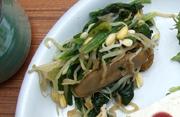 豆もやしと有機ほうれん草の辛子醤油和え