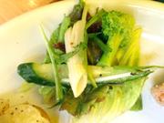 有機レタスと有機ブロッコリーの粒マスタードドレッシング