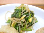 有機豆もやしと有機青菜のわさび醤油和え
