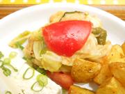 有機トマトと有機ズッキーニ、有機キャベツのバルサミコマリネ