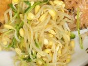 豆もやしと豆苗のカレーナムル